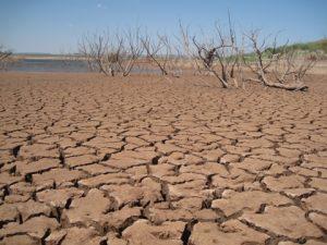 ドナルド大統領気候変動